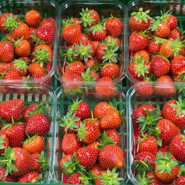 Picture of Fresh Strawberries (20x400g)