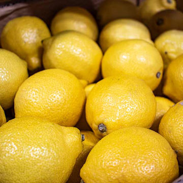Picture of Lemons (113)