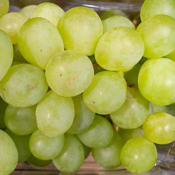 Picture of Green Grapes (seedless) (10x500g)