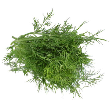 Picture of Dill (100g)