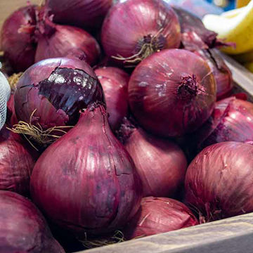 Picture of Red Onions (10kg)