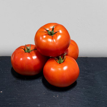 Picture of Beef Tomatoes (7kg)