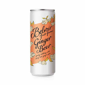 Picture of Ginger Beer (12x25cl)