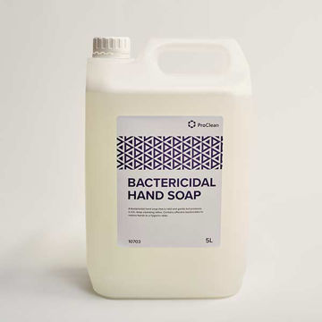 Picture of Bactericidal Hand Soap (2x5L)