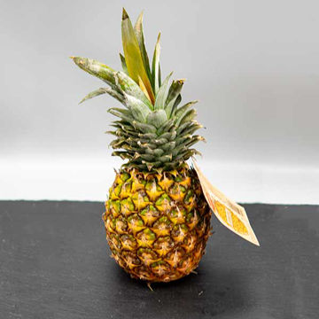 Picture of Large Pineapple (8)