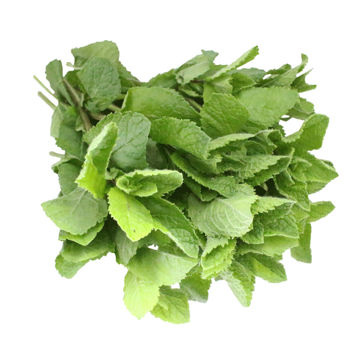 Picture of Mint (100g)
